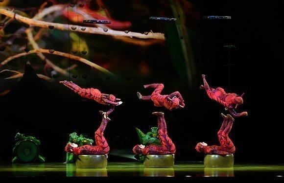 Ovo Cirque Du Soleil Cheap Theatre Tickets Royal