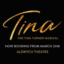 Tina The Tina Turner Musical Cheap Theatre Tickets